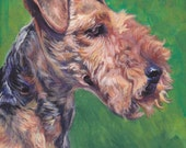 Welsh terrier portrait dog art CANVAS print of LA Shepard painting 8x8