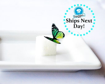 Itsy Bitsy Mini Edible Butterflies - Assorted Green set of 48- for Cake Decorating and Cupcake Toppers
