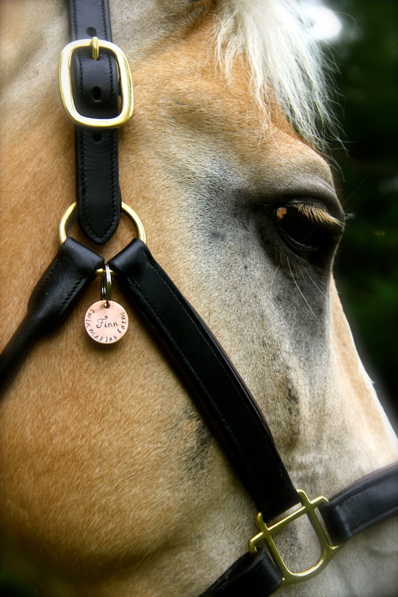 Custom Equestrian Halter Tag Bridle Tag In Hand Stamped