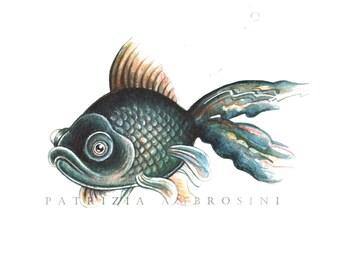 Original 10X8 Watercolour black moor fish  No.10... Not a print ..original painting red fish black fish