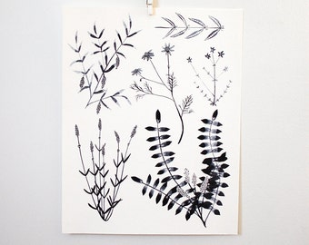 Black + White Botanicals, 11x14 print