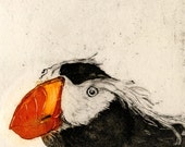 Puffin and Cormorant, Sea bird diptych, original fine art etching