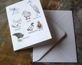 Notecard - Duck Pond Collection