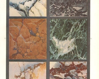 1904 Several Types of Marble I. Vintage Print to Frame