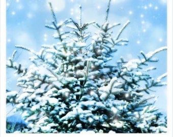 Typography, typographical print, photography, Nature, Winter, snow, pine tree, blue, mint, ice blue, soft,  zen, happy
