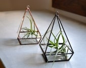 Geometric Terrarium Reclaimed Glass, Small
