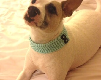 Knit Dog Collar Fashion accessory with buttons - Light aqua blue