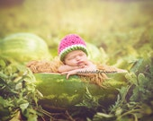 Watermelon Crochet Fruit Summer Beanie Hat Newborn Infant Baby Girl Photography Prop tutu set option