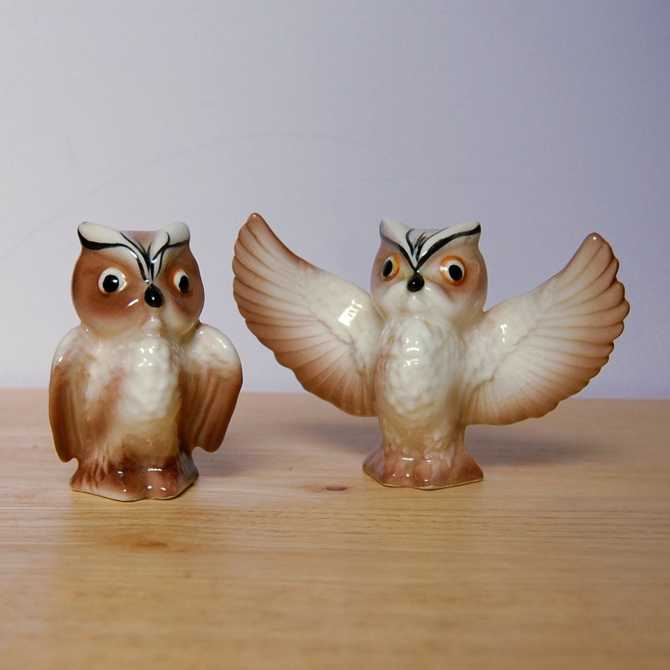 Brown owl salt and pepper shakers wings spread wild farm - Owl salt and pepper grinders ...