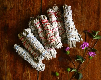 One California White Sage Bundle Smudge Stick Ceremony Smudging Herbs Natural Incense Cleansing Ritual Purification Salvia Apiana