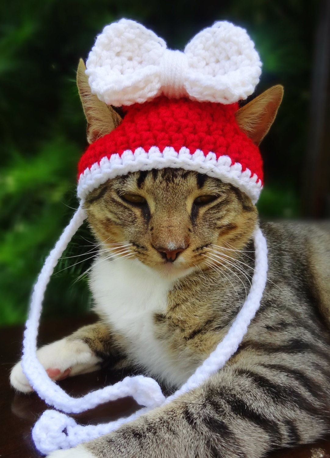 Christmas Cat Hat Christmas Cat Costume Christmas Hat for