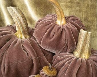 Velvet PUMPKINS & Velvet ACORNS - Real Pumpkin Stems and Real Acorn Caps - Mauve