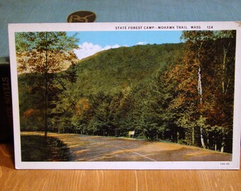 Vintage Postcard, Mohawk Trail, State Forest Camp, Massachusetts, 1920s Paper Ephemera