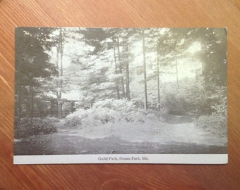 Antique Postcard - Guild Park, Ocean Park, Maine, 1910s Vintage Paper Ephemera