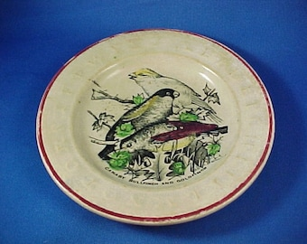 Antique English Staffordshire Child's Pottery Alphabet Plate, Hand Painted Birds