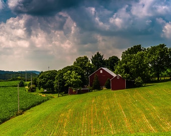 Barn and rolling farm fields under stormy sky in Pennsylvania countryside- Rural Landscape Photography Fine Art Print or Wrapped Canvas