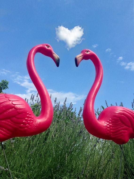Reproduction grande 2 flamants roses de la embl matique - Flamant rose decoration ...