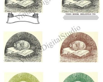 Unique Printable Bookplate or Bookmark  Image from 17th Century Woodcut. Mouse asleep on book. Great for Collage and transfers too.