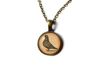 Bird jewelry Pigeon necklace Animal pendant Art charm NW24
