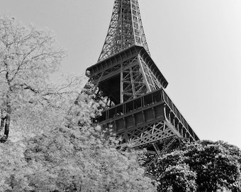 Eiffel Tower in Autumn - Paris, France - 8x10 Black and White Photo Industrial Art Picture