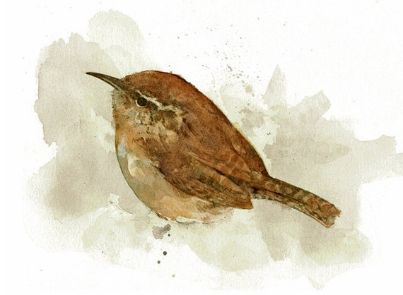 Carolina Wren Watercolor Painting 5x7 Print