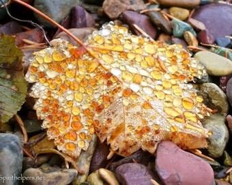 Raindrops dorn an Autumn Leaf, Amber raindrops, Macro photography, magical stones, Photograph or Greeting card