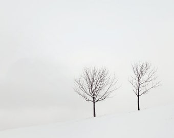 Winter Landscape Photography, Black and White Print, Two Trees, Snow, Winter Decor, Minimalist Art, Tree Photography - Two Solitudes