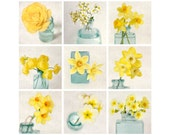Yellow Art Print Set, Yellow Flowers, Set of Prints, Yellow Photography Set, Floral Photography Prints, Teal, Aqua, Yellow, Set of 9 Prints