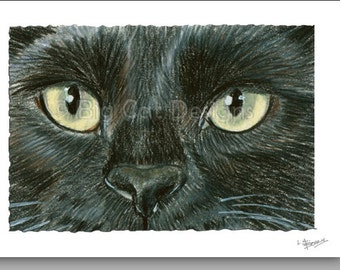 CAT CARD. Black Cat with Golden Eyes note card. 5x7 Framable Card.