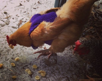 Chicken sweater, chickens, hen sweater, hens, sweaters, pets, crochet, purple, pets, pet clothing