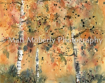 Fall Series VI birch trees fine art print