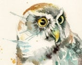 INSTANT DOWNLOAD Spectacled Owl painting watercolor bird digital file