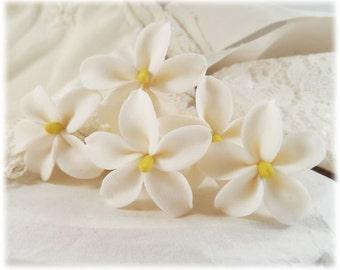 Natural White Jasmine Hair Pins - Bridal Hair Flowers