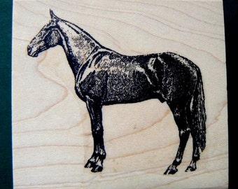 speed horse rubber stamp WM P16
