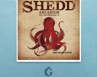Shedd Aquarium Chicago Octopus original graphic illustration archival giclee art print by Stephen Fowler PIck A Size