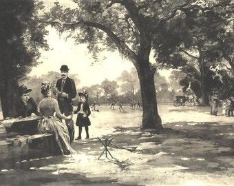 WHITE OAKS MENLO Park by James Fagan ~ John Muir series 1880s Vintage Antique Art Print Gravure [Inv# PictCA 68