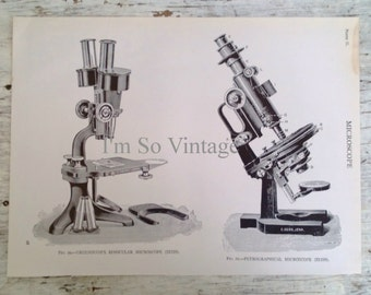 vintage black and white microscope illustration 1926