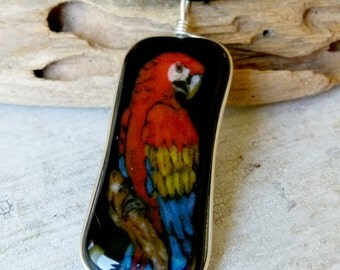 Macaw parrot necklace  - fused glass pendant