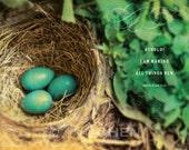 Scripture Art - Inspirational Art - Bible Verse Art - Christian Gift - Robins Nest - All Things New - Revelation 21 - FULL Color Version
