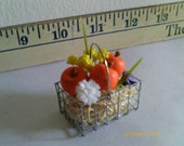 Miniature Fall/Halloween Wire Basket - with Mini- Pumpkins, Flowers, and Excelsior - Fall Colors