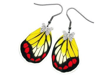 Real Butterfly Wing Earrings (Delias Hyparete Hindwing  - E213)