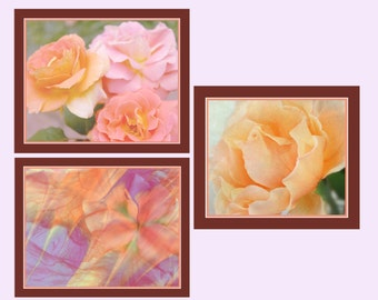 Floral Photo Group, Floral Photos, Floral Wall Art, Peach Roses Photos, Abstract Iris Photo, Garden Photo Art, Nature Photography