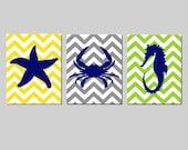 Nautical Kids Wall Art Nursery - Chevron Starfish, Crab, Seahorse - Sea, Beach, Ocean - Set of Three 8x10 Prints - CHOOSE YOUR COLORS