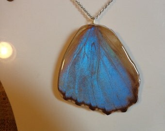 REAL Butterfly Wing Pendant THICK & SOLID