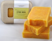 Citrus Wood earthy conditioning shampoo bar
