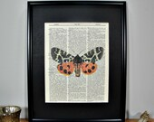 FRAMED 11x14 - Vintage Book Page Dictionary Print - Orange & Black Butterfly