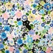 Cocoland Cat Floral Kawaii Japanese Fabric Blue by the Half Yard