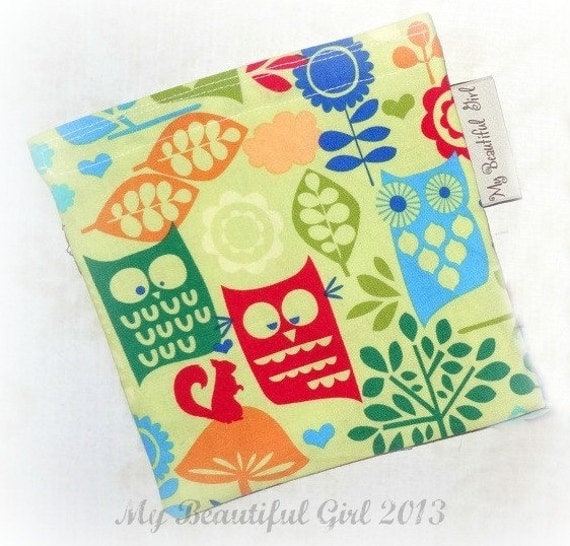 Retro Owl ReUsable Sandwich Bag - Fun, Summer, Kids - CLEARANCE