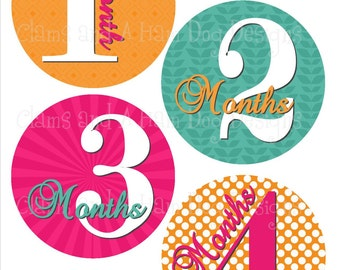 Baby Girl Monthly Milestone Stickers- with optional Just born sticker or Gerber ONESIE - Baby month stickers- Monthly baby stickers- GRL261
