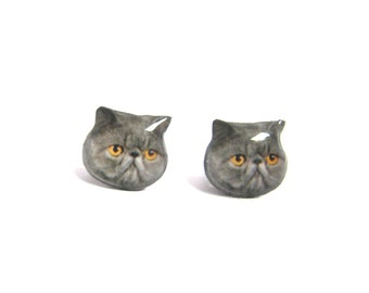 Grey Exotic Cat Kitten Stud Earrings / Cat earrings / Pet memorial gift / Pet Jewelry / personalized / Cat Lover Gift / kitten / A025ER-C38